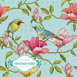 Vintage Card - Flowers and  Birds Stock Image