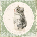 Vintage card with fluffy kitten. Royalty Free Stock Photos