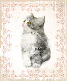 Vintage card with fluffy kitten. Stock Image