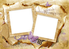 Vintage card with frame and butterfly Stock Images