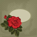 Vintage card with frame. Red rose Royalty Free Stock Photography