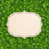 Vintage card on green leaves texture. Royalty Free Stock Photos