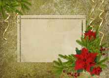 Vintage card for the holiday  with branches Stock Photography