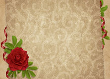 Vintage card for the holiday with flower Royalty Free Stock Photo
