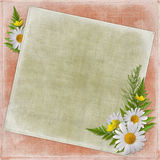 Vintage card for the holiday  with flowers. On the abstract background Stock Photos