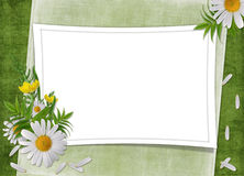 Vintage card for the holiday  with flowers. On the abstract background Royalty Free Stock Image