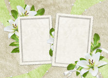 Vintage card for the holiday  with flowers Stock Photography
