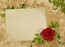 Vintage card for the holiday  with red rose. Vintage card for the invitation or congratulation with red rose Royalty Free Stock Photography