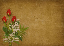 Vintage card for the holiday with red rose. Vintage card for the invitation or congratulation with red rose Royalty Free Stock Images