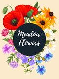 Vintage card with meadow flowers Stock Photography