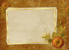 Vintage card from old paper and flower. On the abstract background Stock Photo