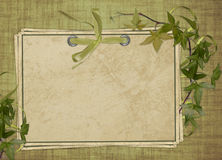 Vintage card from old paper and ribbon. On the abstract background Stock Photo
