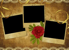 Vintage card from old paper and rose. On the abstract background Stock Image