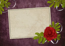 Vintage card from old paper and rose. On the abstract background Stock Images