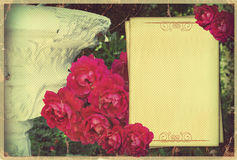 Vintage card.Pink flowers on old paper background Royalty Free Stock Photography