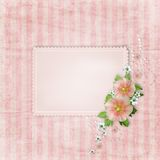 Vintage card and pink mallow Stock Photo