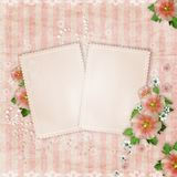 Vintage card and pink mallow Royalty Free Stock Image