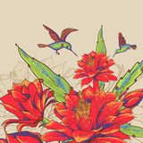Vintage Card with Red Flowers and Hummingbirds. Royalty Free Stock Images