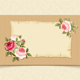 Vintage card with red and pink roses. Vector eps-10. Stock Photo