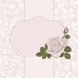 Vintage card with rose. Elegant ornate background with  seamless pattern Stock Image