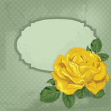Vintage  card with rose and frame. Stock Images