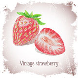 Vintage card with strawberry. Stock Photography
