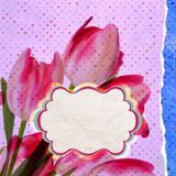 Vintage card Tulip on polka dot background. EPS 10 Royalty Free Stock Photos