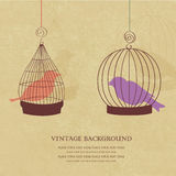 Vintage card with two cute birds in  cages Royalty Free Stock Photos