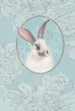 Vintage card with white bunny Stock Photos