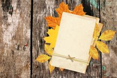 Vintage cards and autumn leaves on old wooden plank. Stock Images
