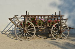 Vintage carriage full of flowers. Very old wooden carriage with rusted metallic parts full of colorful flowers of petunia and calendula. Gura Portitei resort at Stock Photos