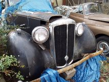 Vintage Cars Rusting Royalty Free Stock Photos