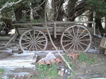 Vintage Cart Under Trees Stock Photo