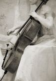 Vintage cello Stock Images
