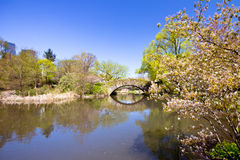 Vintage Central Park NYC Royalty Free Stock Images