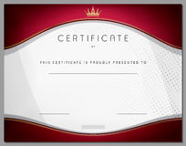 Vintage certificate template with vinous border and gold Royalty Free Stock Image