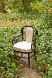 Vintage chair in the park stock photo