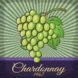 Vintage Chardonnay Grape poster design. Royalty Free Stock Image
