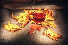 Vintage chaud d'automne de thé Photographie stock libre de droits