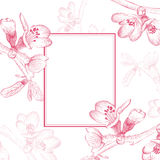 Vintage Cherry Blossom Flower Border Royalty Free Stock Image