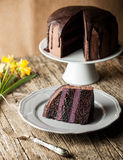 Vintage chocolate cake with blueberry cream Stock Images