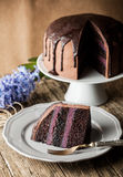 Vintage chocolate cake with blueberry cream Stock Photo