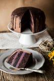 Vintage chocolate cake with blueberry cream Stock Photos