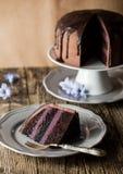 Vintage chocolate cake with blueberry cream Stock Image