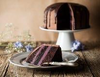 Vintage chocolate cake with blueberry cream Royalty Free Stock Image