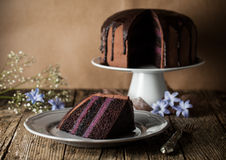 Vintage chocolate cake with blueberry cream Royalty Free Stock Photography