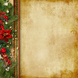 Vintage Christmas background with holly and firtree Stock Photography