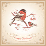 Vintage Christmas card with bullfinches and scroll Royalty Free Stock Images