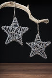 Vintage Christmas decorations hanging from tree branch Stock Images