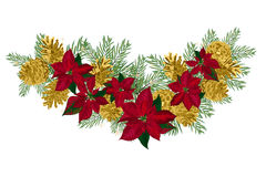 Vintage Christmas garland with golden pine cones and red poinsettia isolated on white background. Vector illustration Stock Photos
